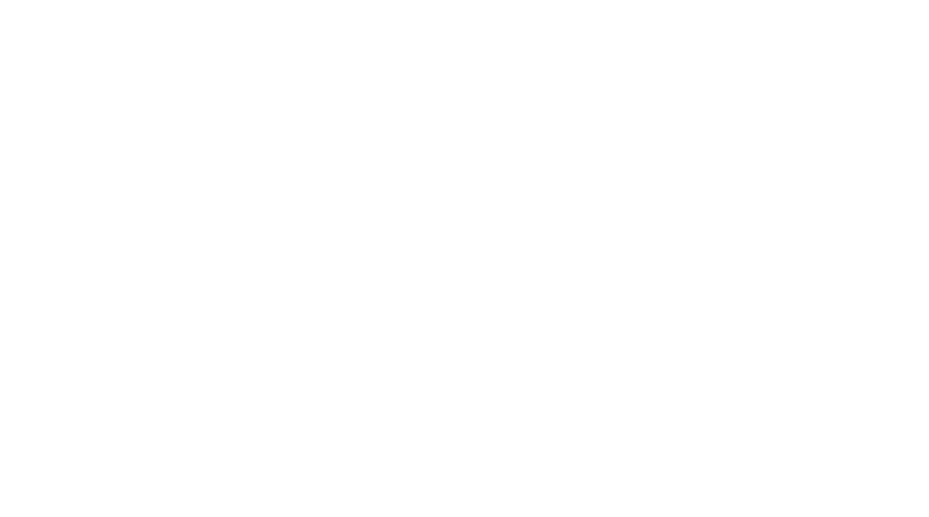 Bernie Brae Travel Connections logo